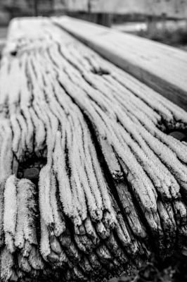 B&W  - Frosty Bench - Jerry Kloehr