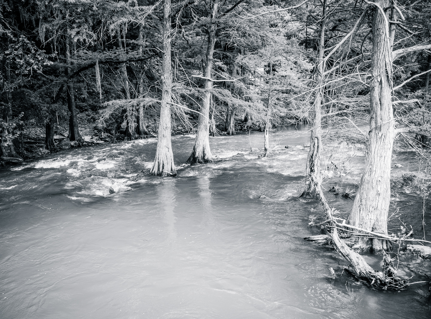 B&W - Guadalupe River Flooding - Mary Hulett
