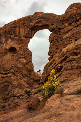 """South Window Arch"" by Dennis Deeny"