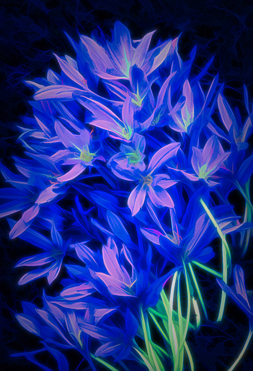 Blue Lilies by Dennis Deeny