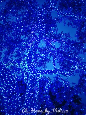 Blue Christmas by Melissa Onks